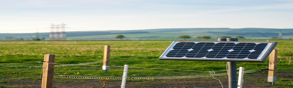 Solar Enaergy Panel with Electric Fence - Small Energy Bill